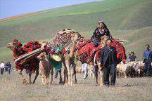 توجه و تاکید دولت بر تامین حقوق عشایر محدوده کشت و صنعت مغان