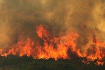 آتش سوزی در 150 هکتار از اراضی منابع طبیعی طارم قزوین  حریق ادامه دارد