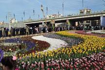 کاشت 3 میلیون از انواع نشای گل های فصلی برای استقبال از بهار 96 در ارومیه