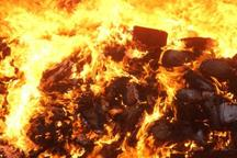هشت هکتار از جنگل ها و مراتع کوار در آتش سوخت
