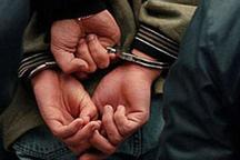 68 درصد سرقت ها در دیلم کشف شده است