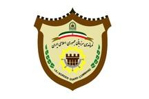29 هزار لیتر سوخت قاچاق در تایباد کشف شد