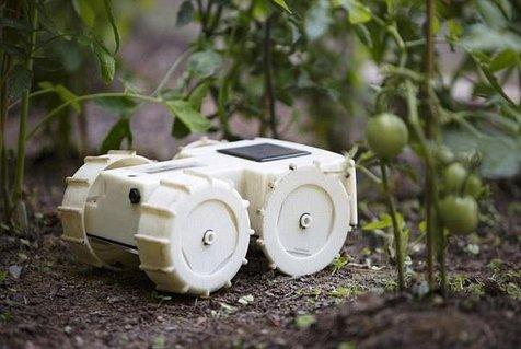 روبات باغبان علف های هرز را ردیابی می کند