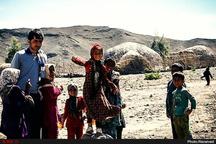 حاشیهنشینی 45 هزار نفر در استان کرمان  محصولاتی که به دلیل مقرون به صرفهنبودن بر روی زمین رها میشوند  نابودی باغات پسته و گردو توسط کرم خراط