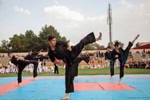 ظرفیت های خوبی برای توسعه ورزش های رزمی در یزد وجود دارد