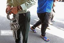 ۶۸۷ نفر از اراذل و زورگیران تهران دستگیر شدند