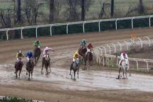 رقابت 44 راس اسب در هفته 25 مسابقات اسبدوانی گنبدکاووس