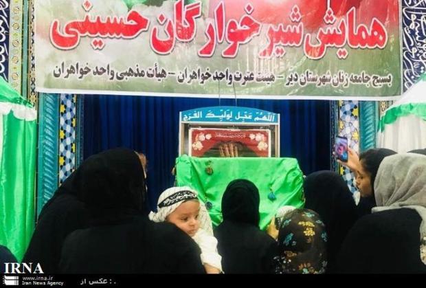 همایش شیرخوارگان حسینی در دیر برگزار شد