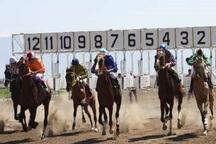 برترین های مسابقات اسبدوانی خراسان شمالی مشخص شدند