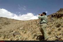 حکم اعدام محیطبان همدانی نقض شد