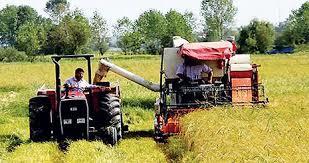 نیروی انسانی عنصر تحول بخش کشاورزی در اردبیل