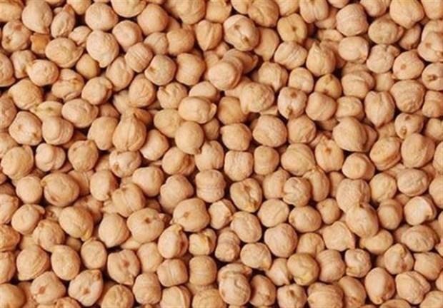 امکان صادرات بیش از یکصد هزار تن نخود در کشور وجود دارد