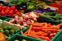 بیش از 118 هزار تن محصول کشاورزی در گچساران تولید شد