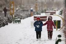 مدارس ابتدایی بیرجند در پی بارش برف تعطیل شد