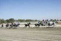 معرفی سوارکاران برتر هفته دوم رقابت های اسب دوانی قهرمانی کشور