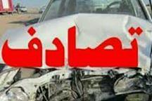 بی احتیاطی راننده در شیراز، جان یک عابر پیاده را گرفت