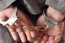 سارقان حرفه ای در رودبار جنوب دستگیر شدند