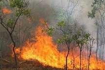 ارتفاعات بازی دراز در غرب کرمانشاه آتش گرفت