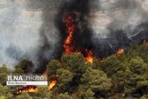 اطفاء حریق در جنگلهای منطقه کوماس شهرستان چگنی