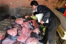 7 تن مواد گوشتی فاسد در البرز کشف و معدوم شد