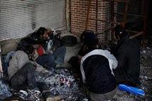 اعتیاد 115 نفر را در سیستان و بلوچستان به کام مرگ کشاند