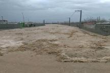 سیل به 20 کیلومتر از شبکه توزیع برق خراسان شمالی خسارت زد