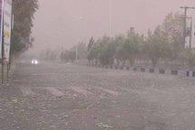 تند باد در مازندران خسارتی نداشت