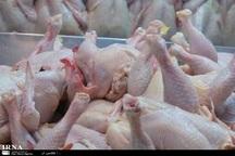 520 تن مرغ منجمد در خراسان رضوی توزیع شد