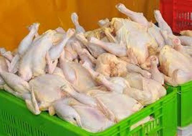 قیمت مرغ گرم در خراسان شمالی پایین تر از کشور است