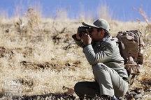 محیطبان چهارمحال و بختیاری با تیراندازی شکارچیان زخمی شد
