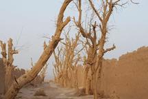 خاتم در چنگ خشکسالی