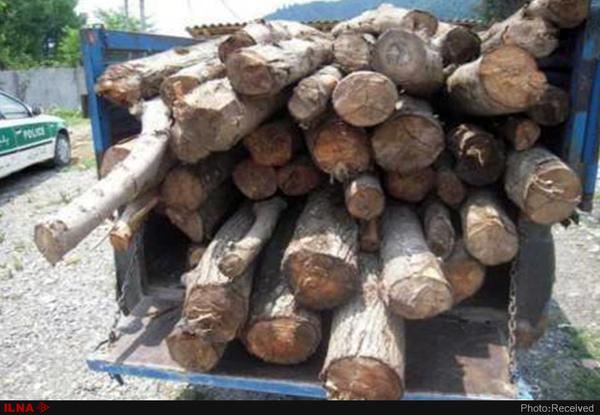 کشف محموله چوب قاچاق در شهرستان شاهرود