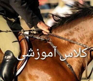 پرورش دهندگان اسب استان های بوشهر و کرمان در کازرون آموزش دیدند