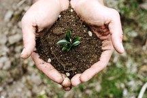 کشاورزی حفاظتی ضامن حفظ منابع خاک است