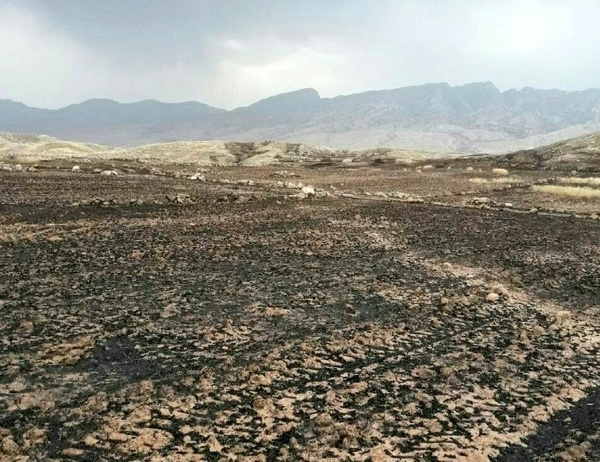 آتش سوزی مزارع کشاورزی در روستاهای ممسنی