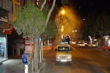 چمن های سطح شهر سنندج سمپاشی می شود