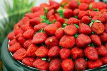 بهره برداری از 75 طرح کشاورزی مازندران