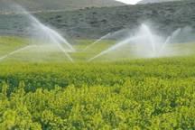 اجرای آبیاری نوین در10هزار هکتار اراضی بوشهر مصوب شد
