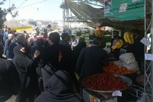 عرضه کالاهای اساسی طرح تنظیم بازار در ایام نوروز در کرج ادامه دارد
