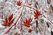 دمای هوای کردستان هشت درجه افزایش یافته است