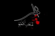 هیمالیای انسانیت و شرف؛ آن علی(ع) که من شناختم
