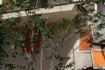 ساختمان چهار طبقه در مرکز تهران فرو ریخت!