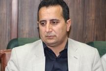 تشکیل290 پرونده قضایی کشت غیرمجاز در شهرستان کهگیلویه