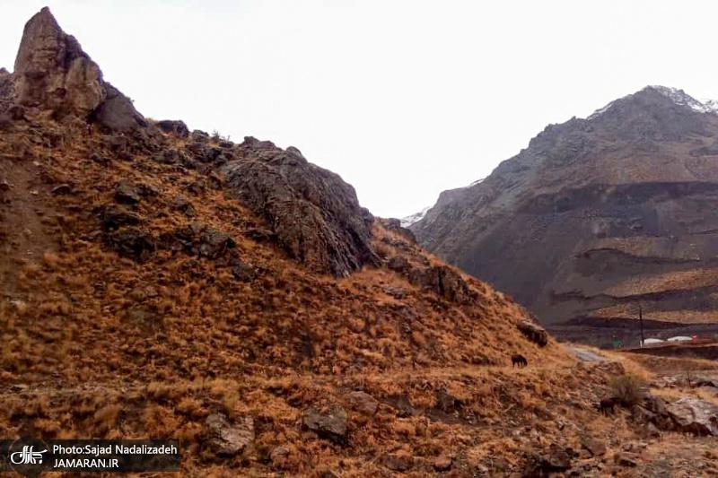 طبیعت پاییزی غار یخمراد و منطقه دیزین