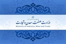 لزوم همکاری بانکها در صنایع تبدیلی  در صنایع خام معدنی باید کار کرد