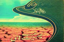 """کتاب """"علی و عصبیت های عرب"""" روایت جهالتی که همچنان ادامه دارد"""