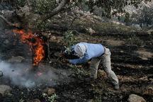 16 تیم آماده مهار آتش در مراتع کرمانشاه هستند