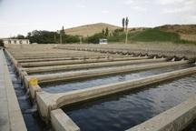37 طرح پرورش ماهی در کهگیلویه و بویراحمد در دست اجراست