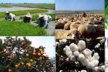 تسهیلات اشتغال روستایی به ۴۱۶ طرح پرداخت شد