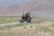 هجوم ملخ ها به آق قلا در استان سیل زده گلستان